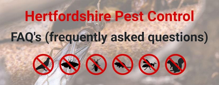 Hertfordshire Pest Control FAQs